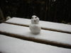 Snow20080122_005
