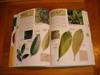 Leafbook_002