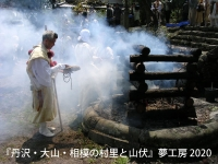 P51_nakatsugawa_goma